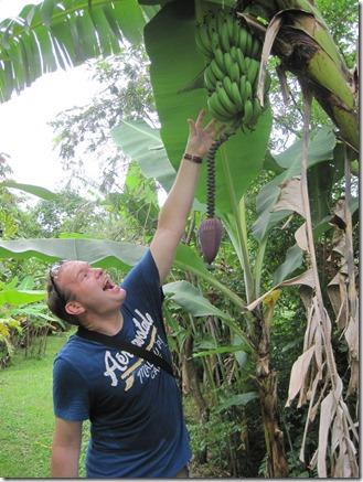 Costa Rica 07.04.12 046
